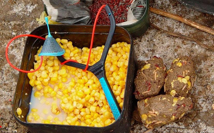 Как правильно сварить кукурузу для рыбалки{q}