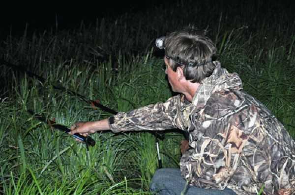 Ночная ловля карася летом