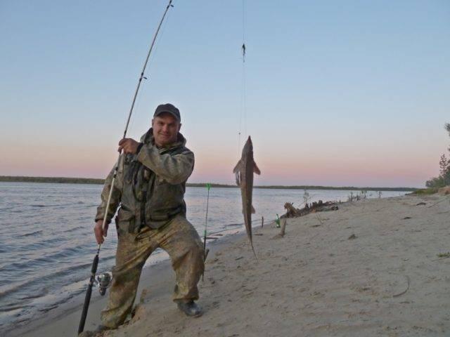 Ее можно собрать из простых доступных элементов, поэтому рыболову не придется тратиться на дорогие удилища, лески и катушки