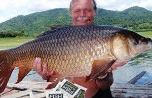 Вы решили купить FishHungry - будьте готовы к большим уловам!