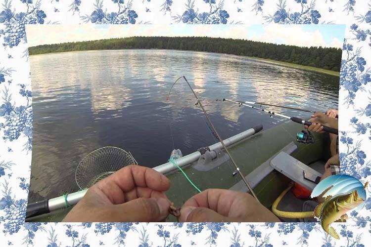 Ловля на бортовые удочки с лодки