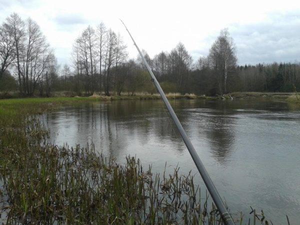 Однако, несмотря на такое разнообразие возможных способов ловли, целенаправленно на язя на рыбалку ходят редко
