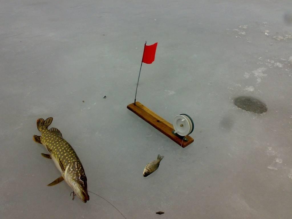 Ловля зимой на жерлицы
