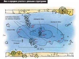 Где ловить судака на джиг осенью
