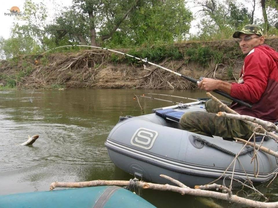 Как ловить щуку на живца с берега и подготовить оснастку