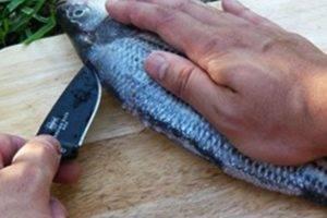 Подготовка рыбы