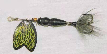 Фото - вертушка жук