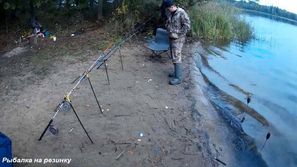 Резинки для ловли леща
