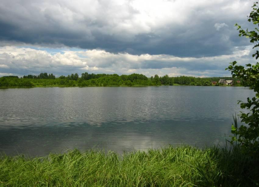 Озеро в Нижегородской области, рай для карася, фото
