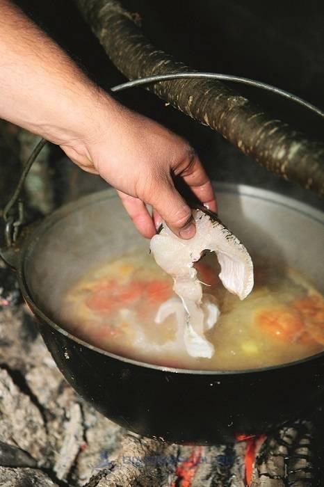 Уха на костре рецепт с фото пошагово