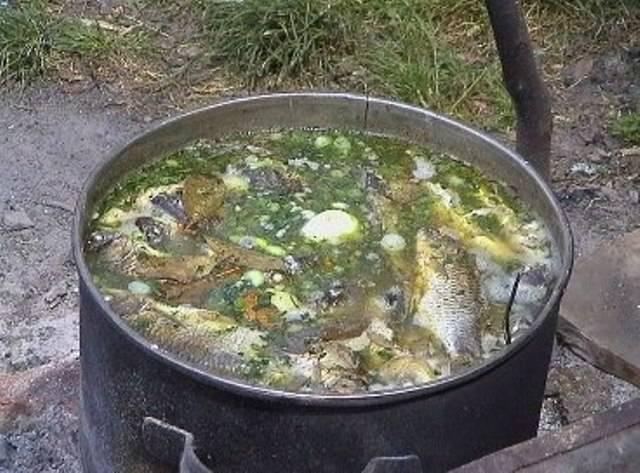 На один литр воды должно приходиться около 350 граммов рыбы, можно взять чуть меньше, если рыба жирная