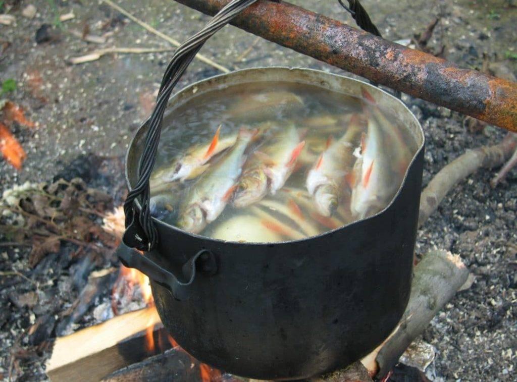 Мелкую рыбу можно класть в уху целиком