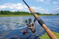 На что клюет форель озерная