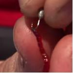 Как насаживать мотыля на крючок