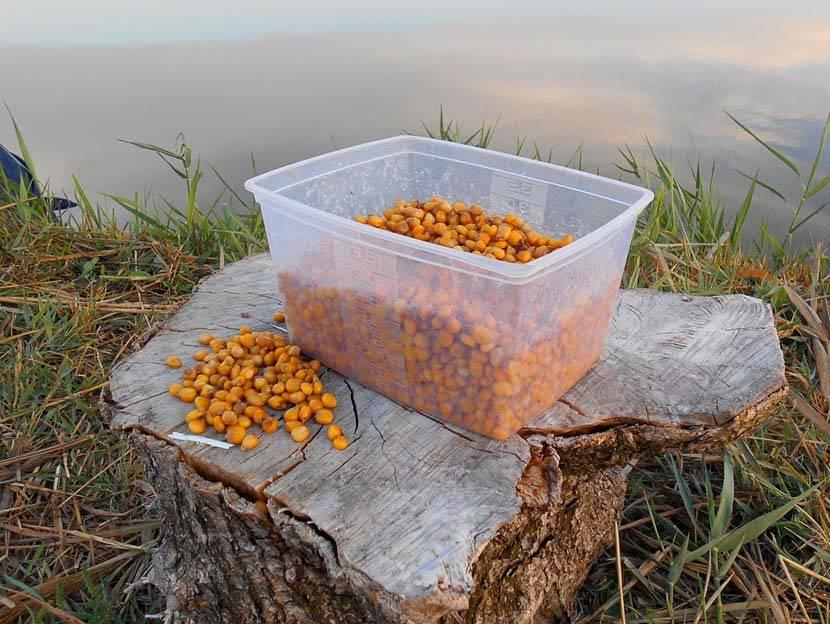 Как сделать пшеницу для рыбалки