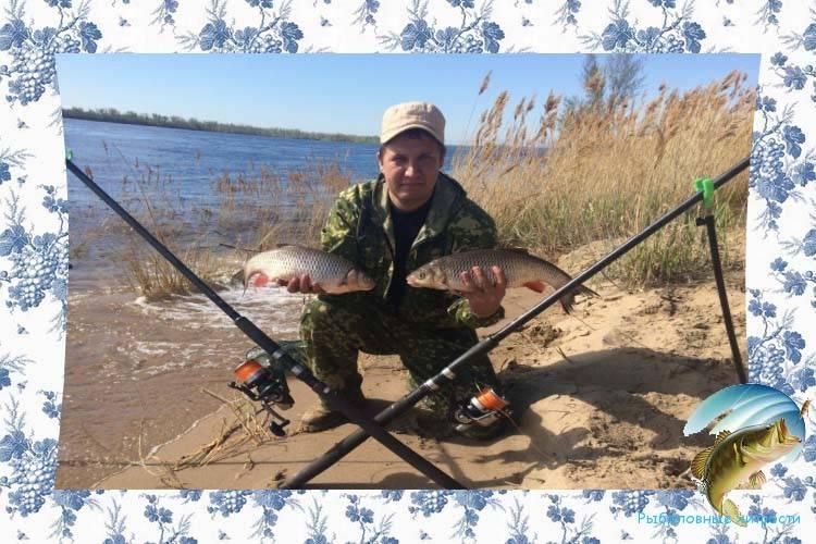 Ловля зимой рыбы на печень