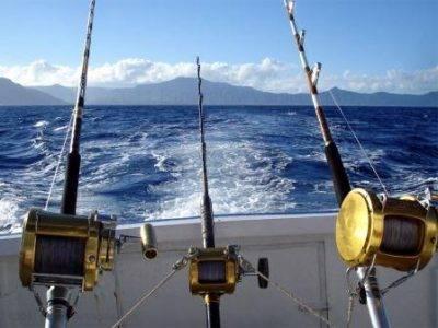 Спиннинги в лодке