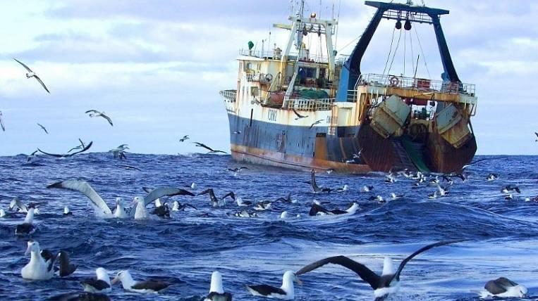 Лицензия на вылов рыбы