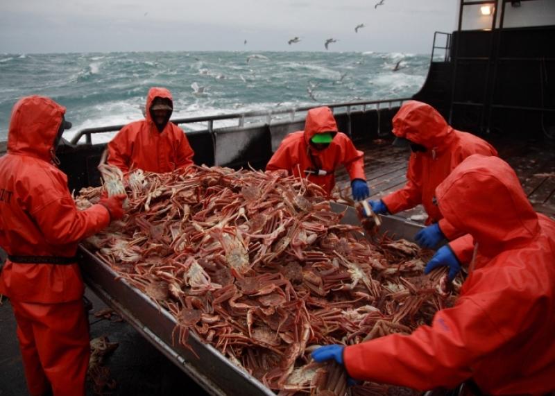 Добыча морепродуктов