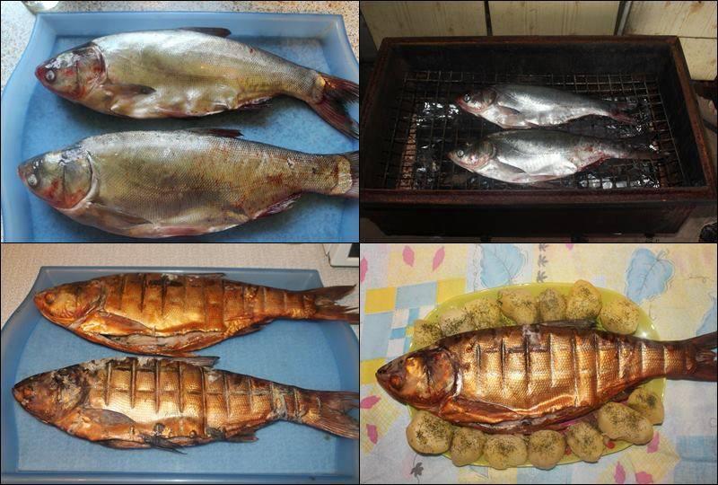 Как правильно коптить рыбу горячего копчения