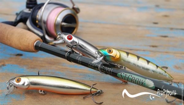 Ловля рыбы на спиннинг для начинающих