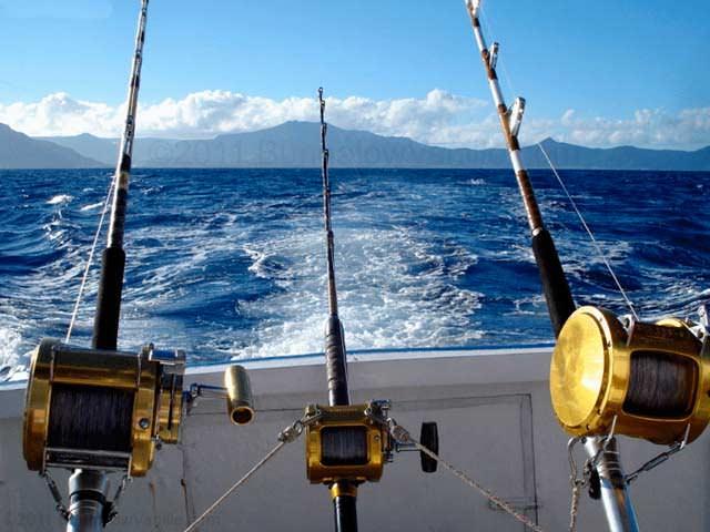 Как ловить рыбу на удочку